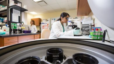 Photo of Explanation on How Biomarker Assays Are Essential For Drug Discovery